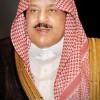 382px-Nayef_bin_AbdulAziz